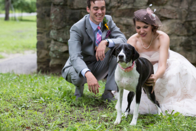 canine dog maid of honor baltimore wedding photographer